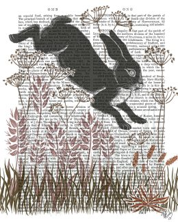 Country Lane Hare 5