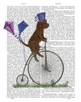 Cavapoo Brown on Penny Farthing