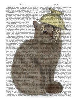 Tabby Cat Colander