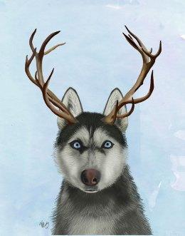 Husky and Antlers