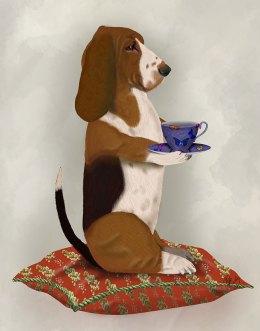 Basset Hound Taking Tea