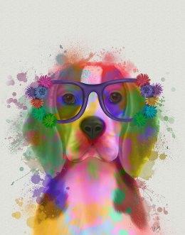 Beagle Rainbow Splash 2