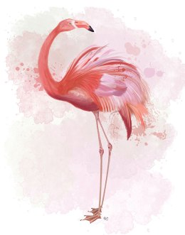 Fluffy Flamingo 3