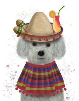 Bichon Frise in Mexican Costume