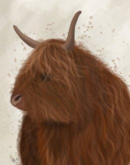 Highland Cow 4
