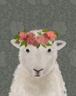 Sheep Bohemian 1