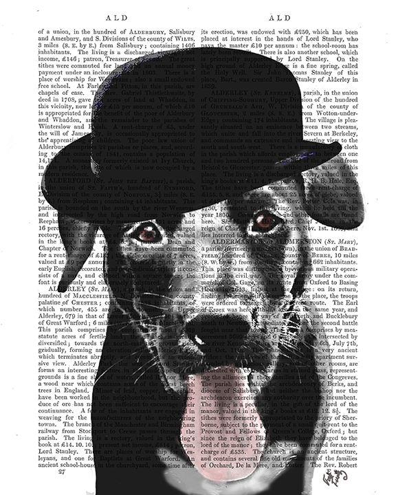 Labrador Black in Bowler Hat