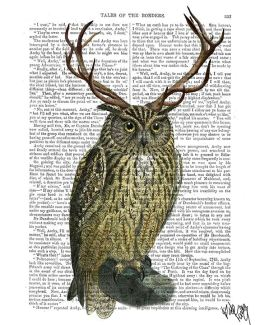 Owl with Antlers