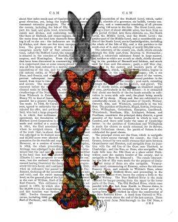 Rabbit Butterfly Dress