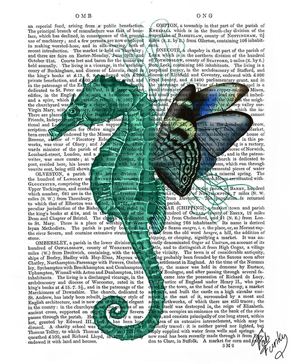 Winged Seahorse