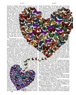 Two Butterfly Hearts