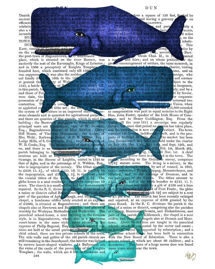 Blue Whale Family