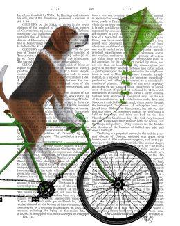 Beagle on Bicycle