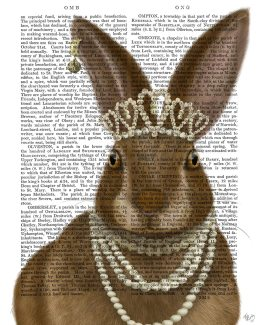 Rabbit and Pearls