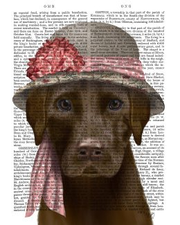 Chocolate Labrador Hat and Pink Scarf