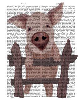 Pig On Fence