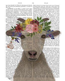 Goat Bohemian 1