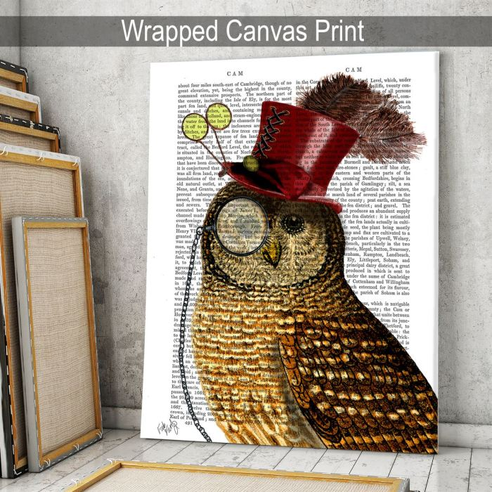 Owl With Top Hat