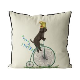 Cockapoo Brown on Penny Farthing