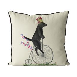 Flat Coated Retriever on Penny Farthing