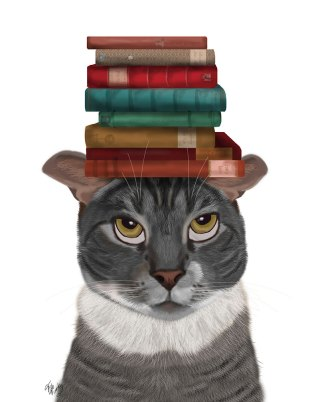 Grey Cat with Books on Head