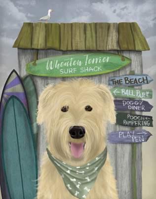Wheaten Terrier Surf Shack