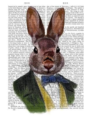 Rabbit in Green Jacket