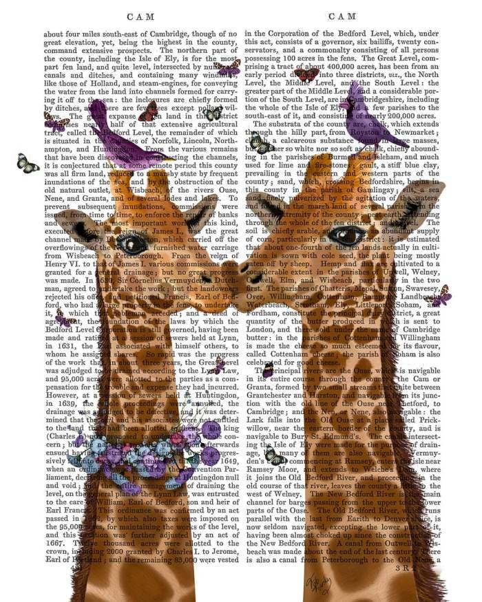 Kissing Giraffes with Birds