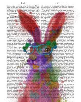 Rabbit Rainbow Splash 2