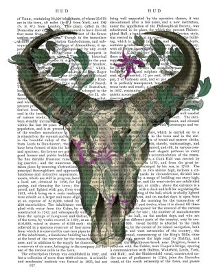 Cow Skull and Passion Flowers