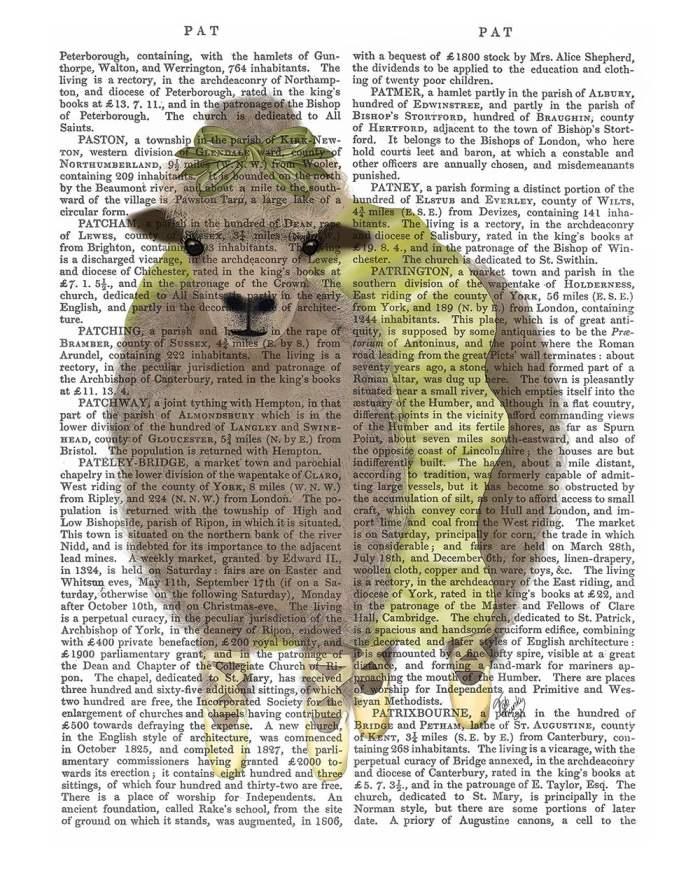 Ballet Sheep 2