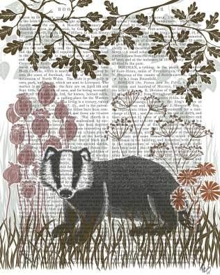 Country Lane Badger 5