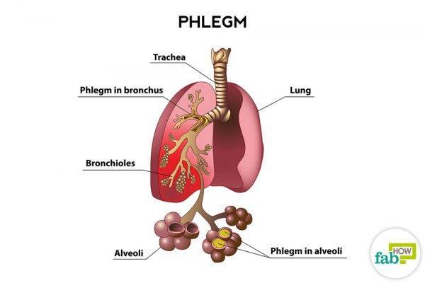 get rid of phlegm