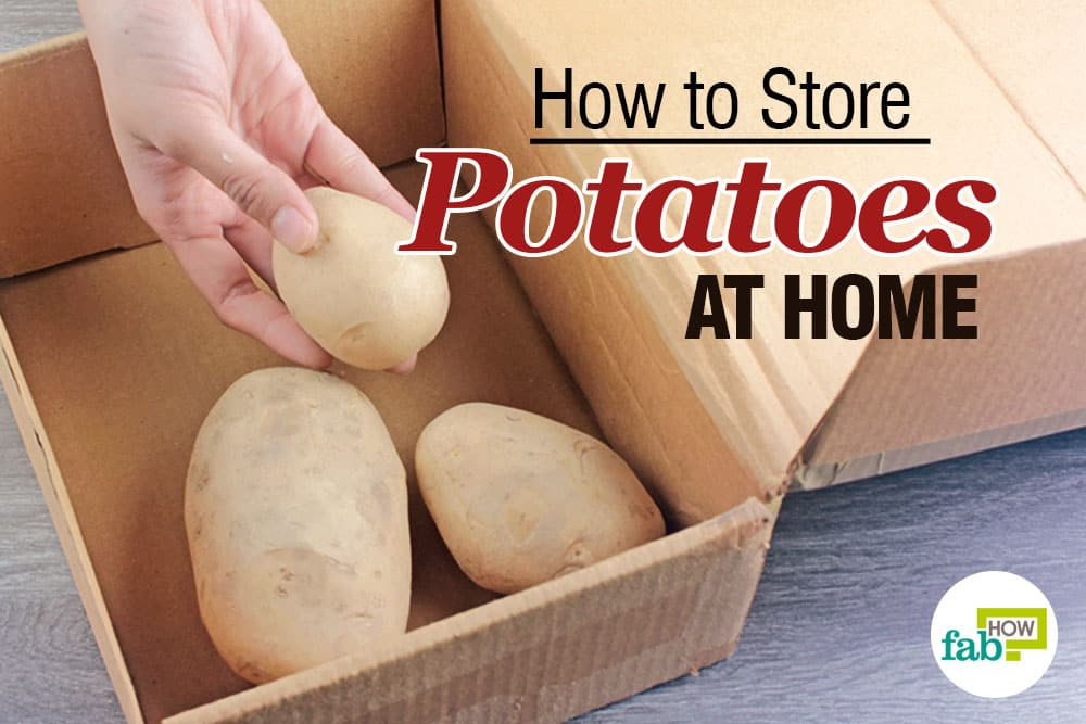 How to Store Potatoes to Keep Them Fresh up to 1 year  Fab How