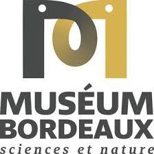 logomuseum