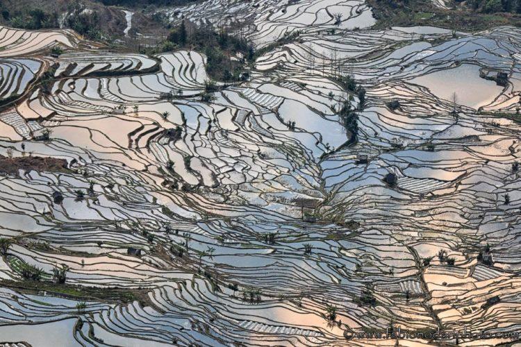 Yuanyang le terrazze di riso patrimonio dellUNESCO in