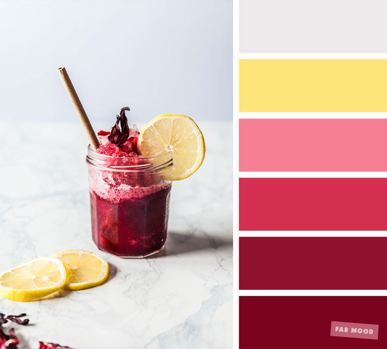Color inspiration  Berry  grey and yellow color palette