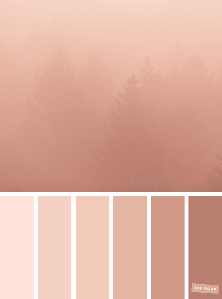 Blush Tones Pretty Blush Color Scheme Fabmood