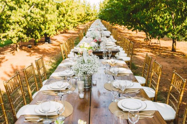 Long Wedding Table in The Peach Orchard | Photography : marymargaretsmith.com | https://www.fabmood.com/a-cozy-fall-wedding-in-the-peach-orchard #peach #fallwedding