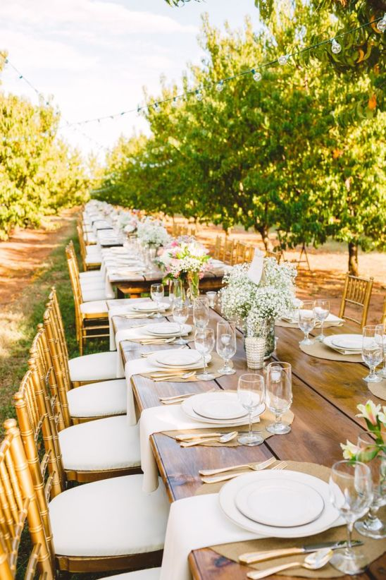 Wedding Tablescapre in The Peach Orchard | Photography : marymargaretsmith.com | https://www.fabmood.com/a-cozy-fall-wedding-in-the-peach-orchard #peach #fallwedding