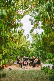 A Cozy Fall Wedding in The Peach Orchard | Photography : marymargaretsmith.com | https://www.fabmood.com/a-cozy-fall-wedding-in-the-peach-orchard #peach #fallwedding