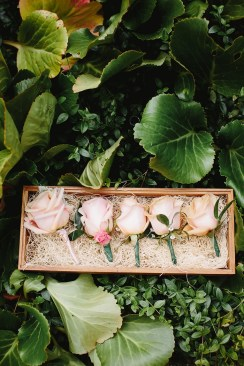 Blush Roses boutonnieres for garden wedding | fabmood.com #boutonnieres #blushwedding #gardenwedding