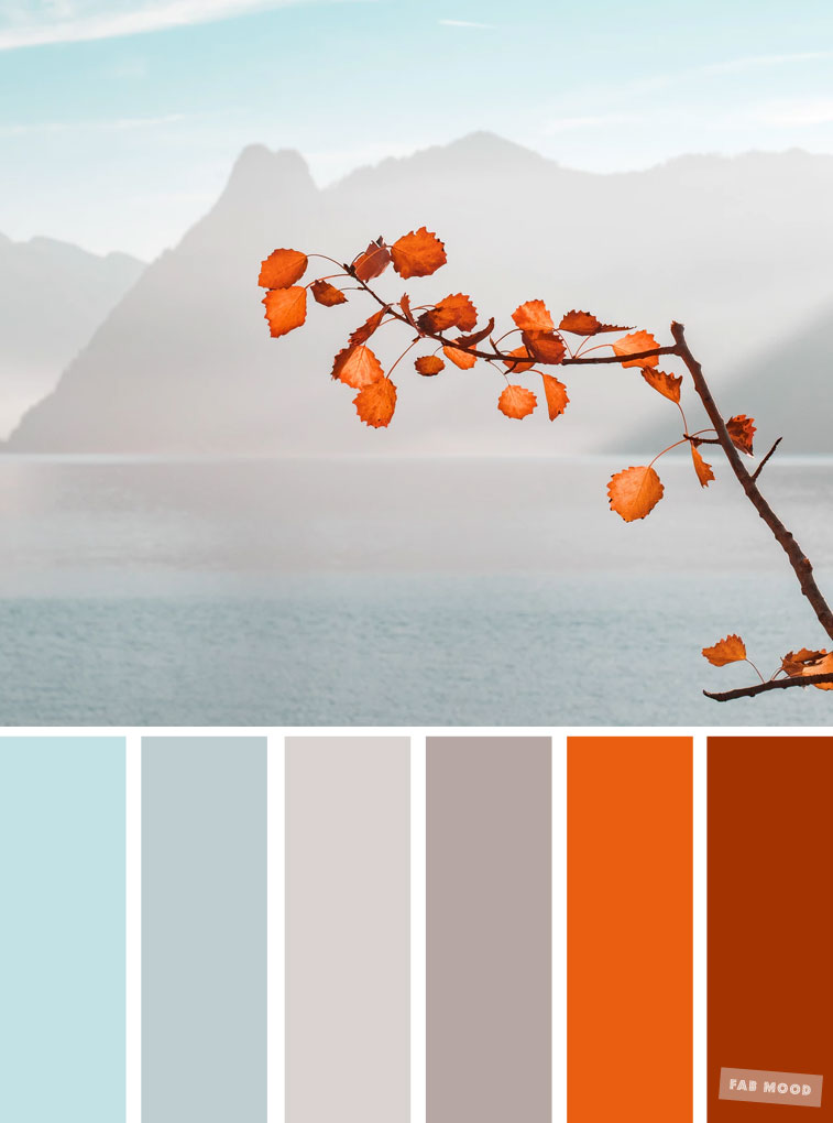 Burnt orange light blue and grey color palette colors of