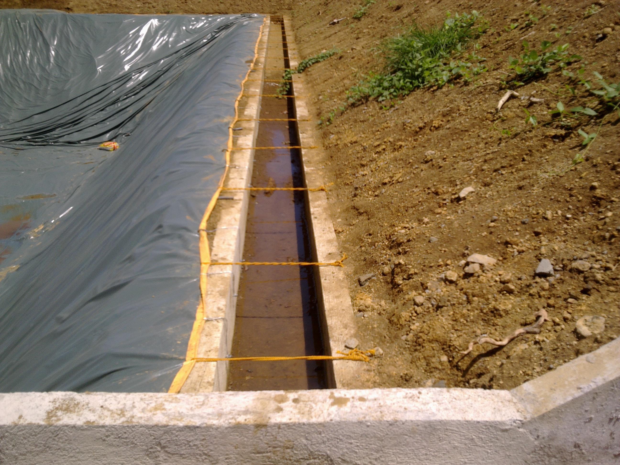 Transparent Pond Liner