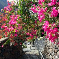 Top 10 Tenerife: ce trebuie să vizităm?