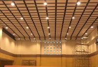 Baffle Ceiling System | Ceiling Baffles Insulation ...