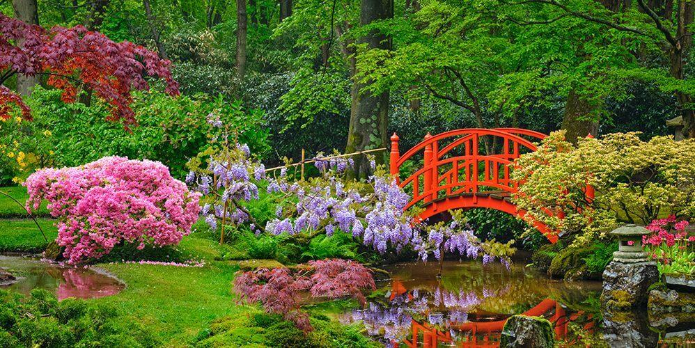 comment creer un jardin zen creer son