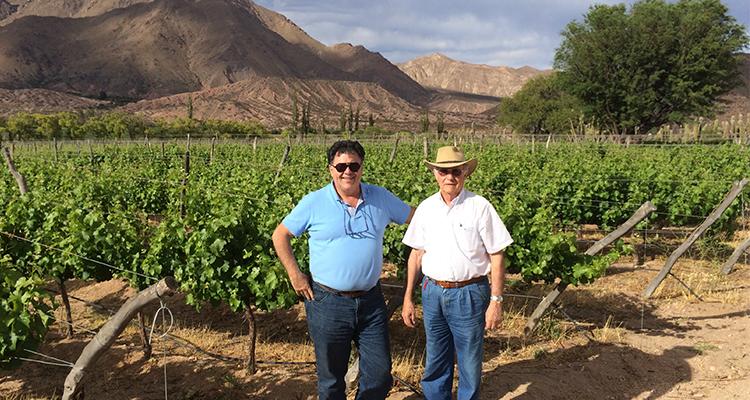 Alejandro Martorell y su padre, cuidan de cerca sus viñas más extremas