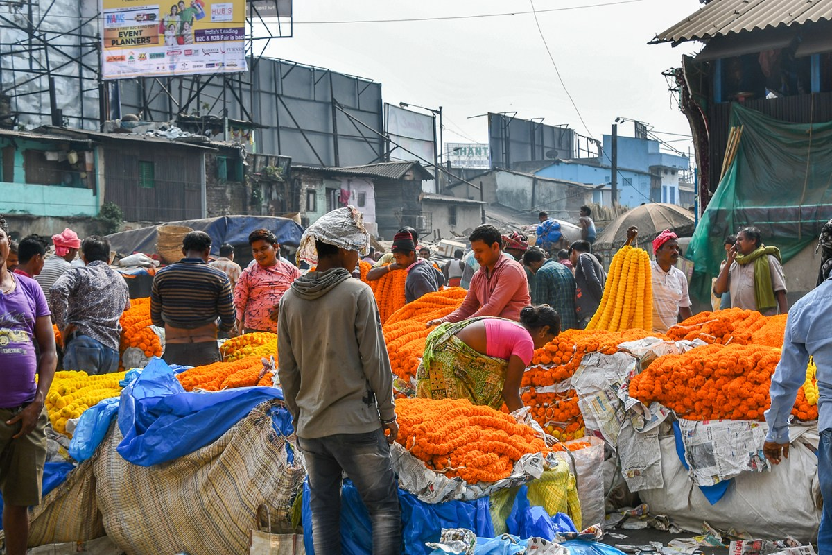 India, Calcutta il Mallick Ghat Flowers Market