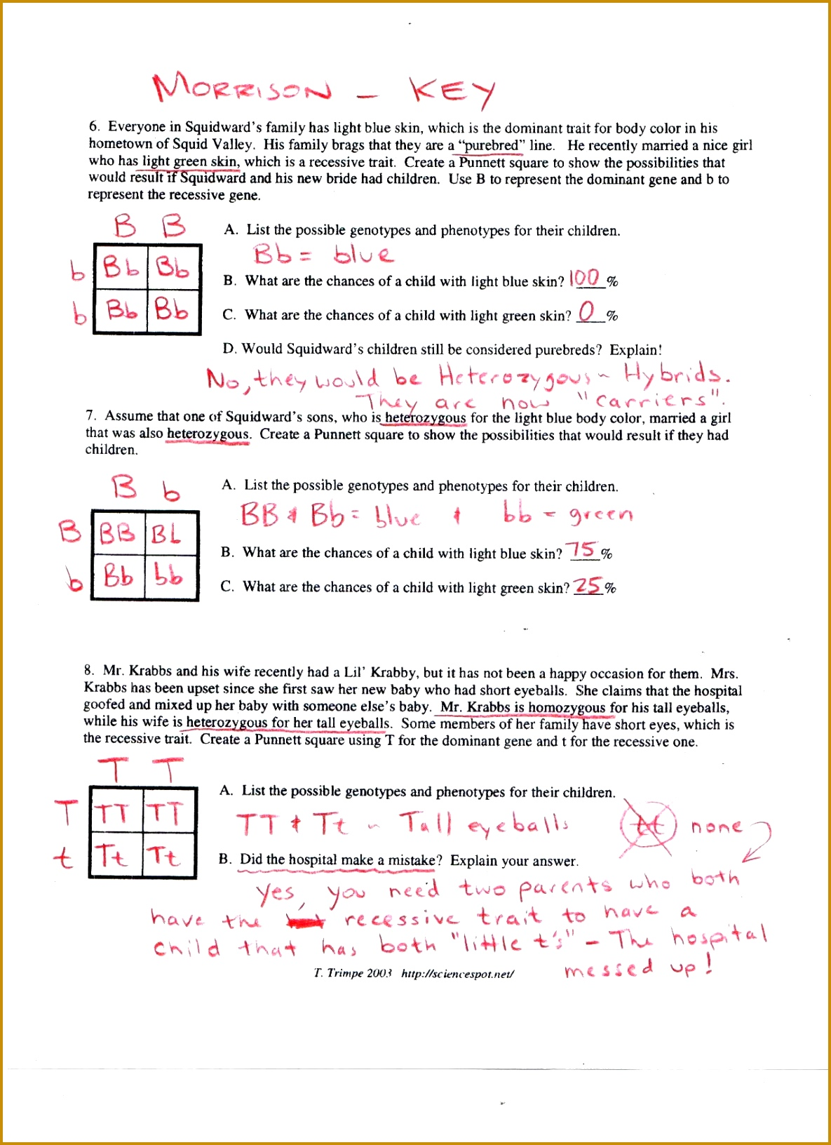 Mendel S Work Worksheet Answer Key